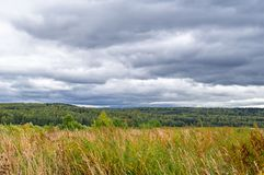 Autumn Landscape Bewölkter Tag mit dunklen Wolken über gelbem Feld Bewölktes Weizenfeld Hügel und See stockfotos
