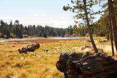 Autumn landscape, Bluff Lake, Big Bear, California, USA Royalty Free Stock Image