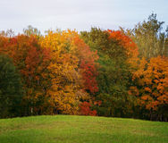 Autumn landscape, the bright colors of the season Royalty Free Stock Image