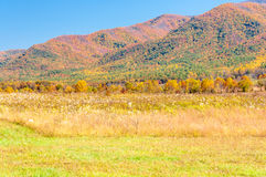 Autumn landscape in Cades Cove, GSMNP Stock Photo