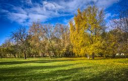 Autumn landscape for calendars. Golden trees on a bright sunny day. Autumn landscape for calendars, posters, photo wallpapers and other projects related to the royalty free stock photography