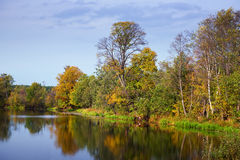 Autumn landscape with calm lake Royalty Free Stock Photo