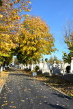 Autumn Landscape in cemetery Royalty Free Stock Photo