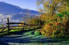Autumn Landscape, cerca de madera y montañas azules en el backgro Foto de archivo