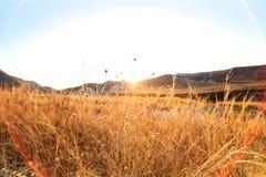 Autumn landscape. Chalk mountains at  sunrise. Stock Images