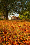 Autumn landscape with church Stock Photography