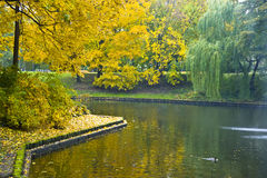 Autumn landscape on the city channel in Riga Royalty Free Stock Photos