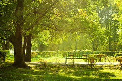 Autumn landscape - city park in nice sunny weather Royalty Free Stock Photo