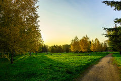 Autumn Landscape in City Park with Path. Autumn Landscape in City Park with Colorful Trees on Meadow with Green Grass and Benches and Path Leading into the Stock Photos