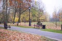 Autumn landscape in the city park. There are benches for rest, strewn with foliage. Stock Images