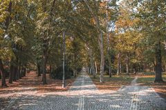Autumn landscape. City park, Vrsac, Serbia stock photos