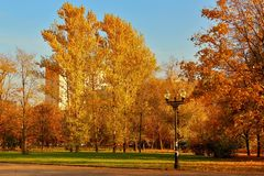 Autumn landscape. City square in golden autumn foliage Royalty Free Stock Image