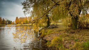 Autumn landscape. the coast of the city water channel, the river, a stream with trees Stock Images