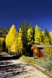 Autumn landscape in Colorado Royalty Free Stock Photography