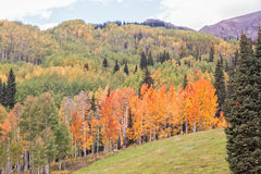 Autumn Landscape in Colorado High Country Royalty Free Stock Photos