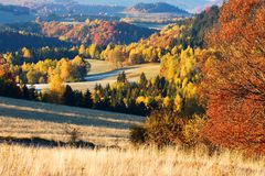 Autumn landscape. With colored trees and meadows Royalty Free Stock Photos