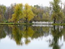 Autumn landscape with colorful forest, lake and reflectio Stock Photos