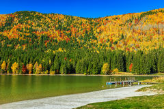 Autumn landscape with colorful forest,St Ana Lake,Transylvania,Romania. Autumn forest landscape and beautiful famous volcanic lake with colorful boats Stock Image