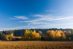 Autumn landscape with colorful trees Stock Photos