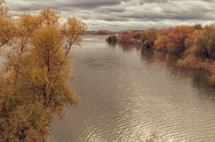 Autumn landscape of colorful trees at the calm river. Autumn landscape of trees at cloudy weather Royalty Free Stock Images