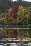 Autumn landscape. Colorful trees, river stock images