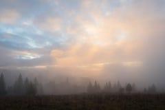 Autumn Landscape com névoa nas montanhas Imagem de Stock