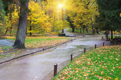 Autumn landscape. Royalty Free Stock Photography