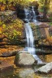 Autumn landscape. Stock Image