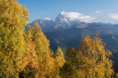 Autumn Landscape con el bosque y la cordillera del abedul Imagen de archivo libre de regalías