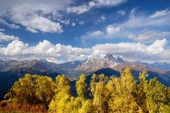 Autumn Landscape con el bosque y el pico de montaña Ushba del abedul Foto de archivo libre de regalías