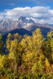 Autumn Landscape con el bosque y el pico de montaña Ushba del abedul Imagen de archivo