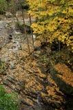 Autumn landscape on Corsica Island, France Royalty Free Stock Image