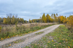 The autumn. Autumn landscape with country road. Trees decorated in autumn colors Royalty Free Stock Photography