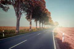 Autumn landscape with countryside road Royalty Free Stock Images