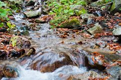 Autumn landscape with creek, rocks and foliage Royalty Free Stock Photo