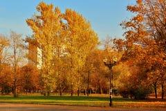 Autumn Landscape Cuadrado de ciudad en follaje de oro del otoño Imagen de archivo libre de regalías