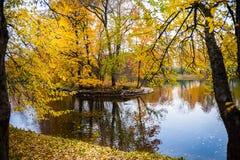 Autumn Landscape Dalingsscène Stock Afbeeldingen