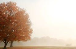 Autumn Landscape de niebla Foto de archivo libre de regalías