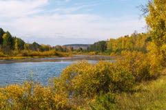 Autumn Landscape De rimpelingen op het water Stock Afbeelding