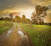 Autumn landscape with dirt road. And a sunset Stock Photos