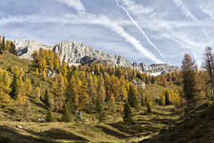 Autumn. Landscape of the Dolomiti di Brenta Royalty Free Stock Image