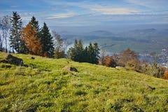 Autumn Landscape e nebbia sopra il lago Luzerne, Svizzera Immagine Stock Libera da Diritti