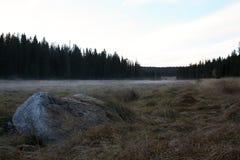 Autumn Landscape in een Mist, het Nationale park van Sumava, Tsjechische Republiek, Europa Royalty-vrije Stock Afbeelding