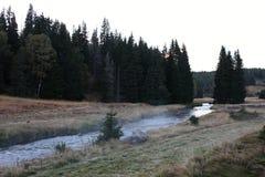 Autumn Landscape in einem Nebel, Nationalpark Sumava, Tschechische Republik, Europa Lizenzfreie Stockbilder