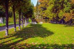 Autumn Landscape em Catherine Park de Tsarskoe Selo, Pushkin, St Petersburg Imagens de Stock Royalty Free