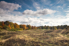 Autumn landscape of the Estonian forest Royalty Free Stock Image
