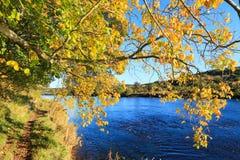 Autumn Landscape et rivière Dee à Aberdeen image libre de droits