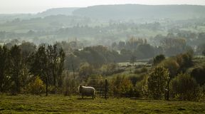 Autumn landscape in evening light in the hills of South Limburg, the Netherlands royalty free stock photos