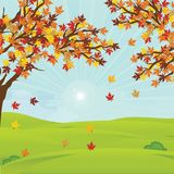 Autumn landscape with fall leaves on the branches of trees on field in sunny day. stock illustration