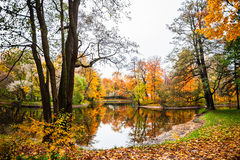 Autumn landscape. Fall scene. Royalty Free Stock Photo